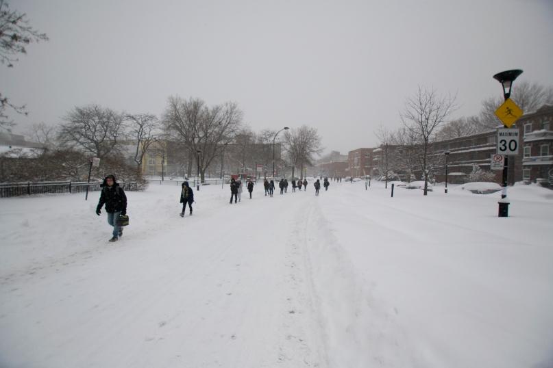 Winter Days in MTL 1