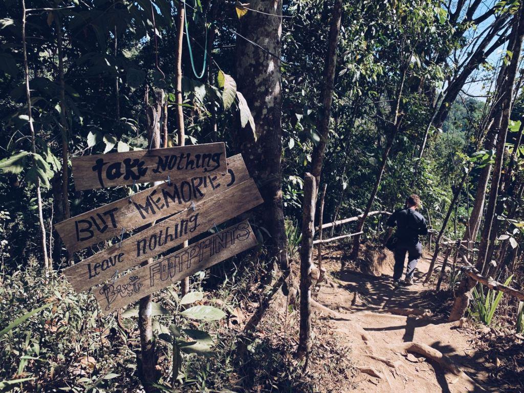 Walking through the jungles